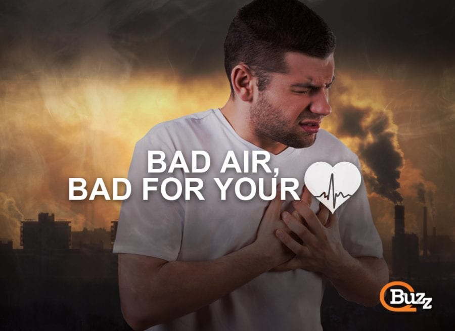 Bad Air Quality is Bad For Your Heart